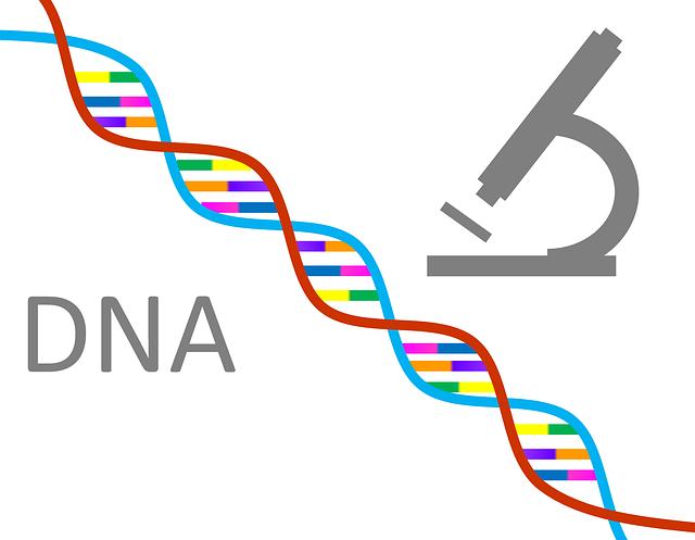 【遺伝子分析キット】ジェノプランが無料でアップグレード|検査結果が大幅更新!